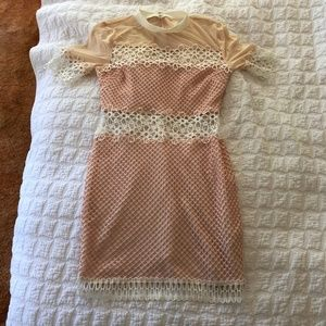 Endless rose sheer and lace dress